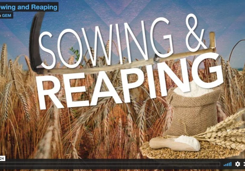 reapingsowing